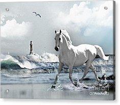 Horse At Roker Pier Acrylic Print