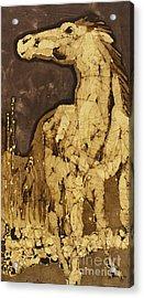 Horse Above Stones Acrylic Print by Carol  Law Conklin