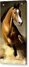 Acrylic Print featuring the painting Horse Agility by James Shepherd