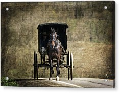 Horse And Buggy Acrylic Print by Tom Mc Nemar