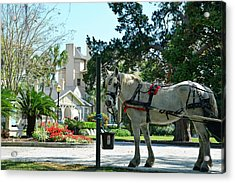 Horse And Jekyll Lsland Club Hotel Acrylic Print by Bruce Gourley