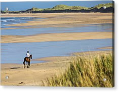 Horse And Rider On Beach With Grassy Acrylic Print by Michael Interisano