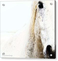 Horse Art - Waiting For You  Acrylic Print by Sharon Cummings