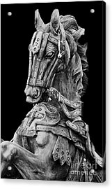 Horse  Acrylic Print by Charuhas Images