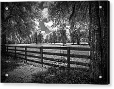 Acrylic Print featuring the photograph Horse Country by Louis Ferreira