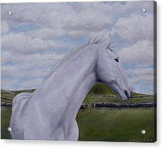 Acrylic Print featuring the painting Horse by Diane Daigle