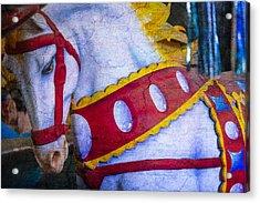 Horse Dreams  Acrylic Print by Garry Gay