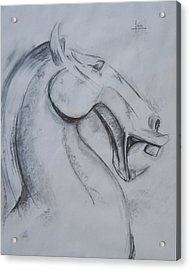 Horse Face Acrylic Print by Victor Amor