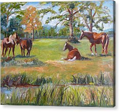 Horse Farm In Georgia Acrylic Print