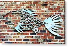 Fish Shoe  Acrylic Print