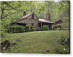 Horse Grazing In The Yard Of A Mountain Acrylic Print by Greg Dale