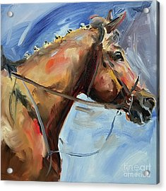 Horse Head Study Acrylic Print