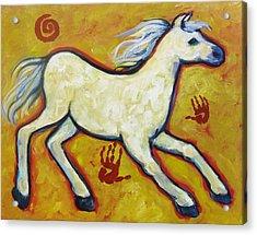 Horse Indian Horse Acrylic Print