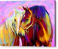 Horse Love Acrylic Print by Karen Derrico