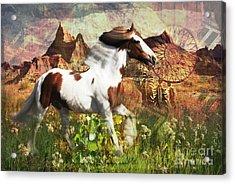 Horse Medicine 2015 Acrylic Print