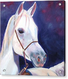 Horse Of A Different Color Acrylic Print