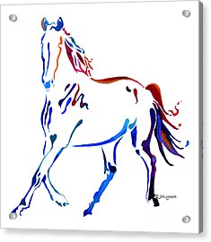 Horse Of Many Colors Acrylic Print