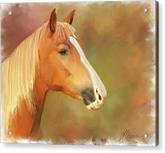 Horse Painting Acrylic Print by Michael Greenaway
