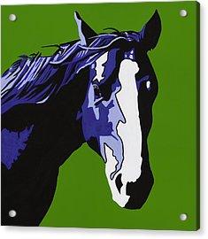 Horse Play Blue Acrylic Print by Sonja Olson