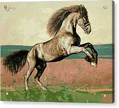 Horse Pop Art Poser Acrylic Print by Kim Wang