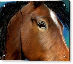 Horse Portrait Close Up Acrylic Print