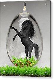 Horse Power Art Acrylic Print