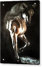 Horse Power Acrylic Print