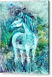 Horse Sense Acrylic Print