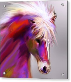 Horse True Colors Acrylic Print