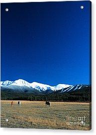 Horse Valley Acrylic Print