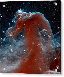 Horsehead Nebula Acrylic Print by Mark Kiver