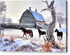Horses And Barn Acrylic Print
