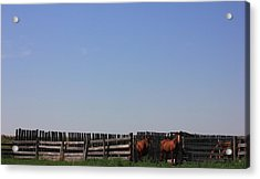 Horses - Corrals - And Alberta Prairie Sky Acrylic Print