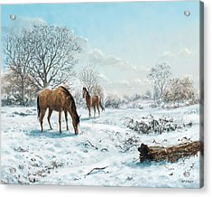 Acrylic Print featuring the digital art Horses In Countryside Snow by Martin Davey