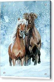 Horses In Winter Acrylic Print by Virginia Sonntag