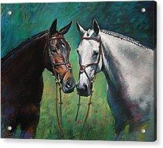 Horses Acrylic Print by Ylli Haruni