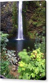 Horsetail Falls Basin Acrylic Print by Marty Koch