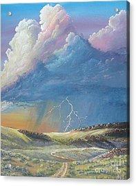 Horsewater Acrylic Print by John Wise