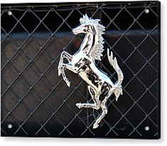Acrylic Print featuring the photograph Horsey by John Schneider