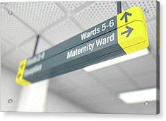 Hospital Directional Sign Maternity Acrylic Print