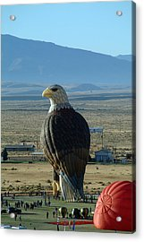 Hot Air Eagle Acrylic Print by Charles  Ridgway