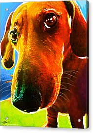 Hot Dog With Relish Acrylic Print