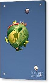 Hot Frog Acrylic Print by Dennis Hammer