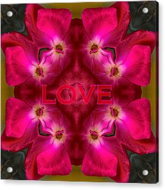 Hot Love Acrylic Print