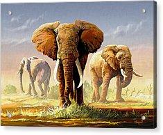 Hot Mara Afternoon Acrylic Print