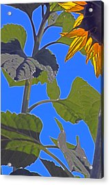 Hot Sunflower Acrylic Print by Leslie-Jean Thornton