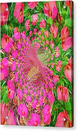 Hothouse Vortex Acrylic Print by Rose  Hill