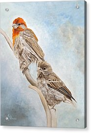 House Finch Couple Acrylic Print