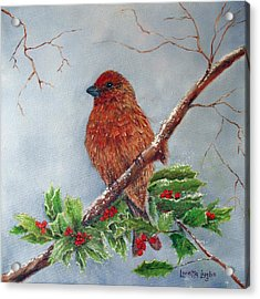 House Finch In Winter Acrylic Print