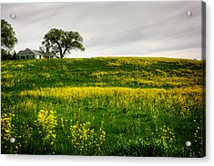 House On The Hill Acrylic Print by Greg Mimbs